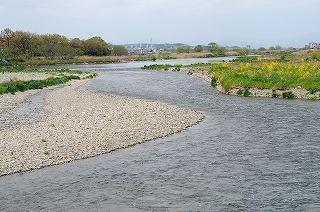 児 そこ に の 多摩川 ここだ さらさら かなしき の さらす に 手作り 何